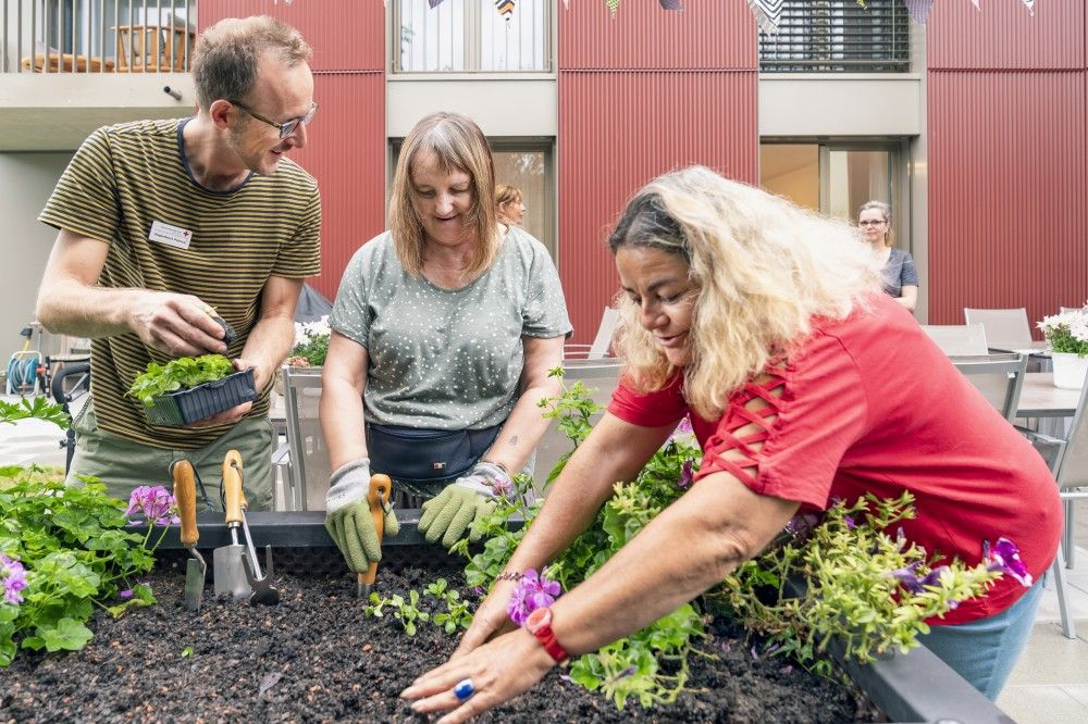 Gemeinsam Pflanzen und Ernten