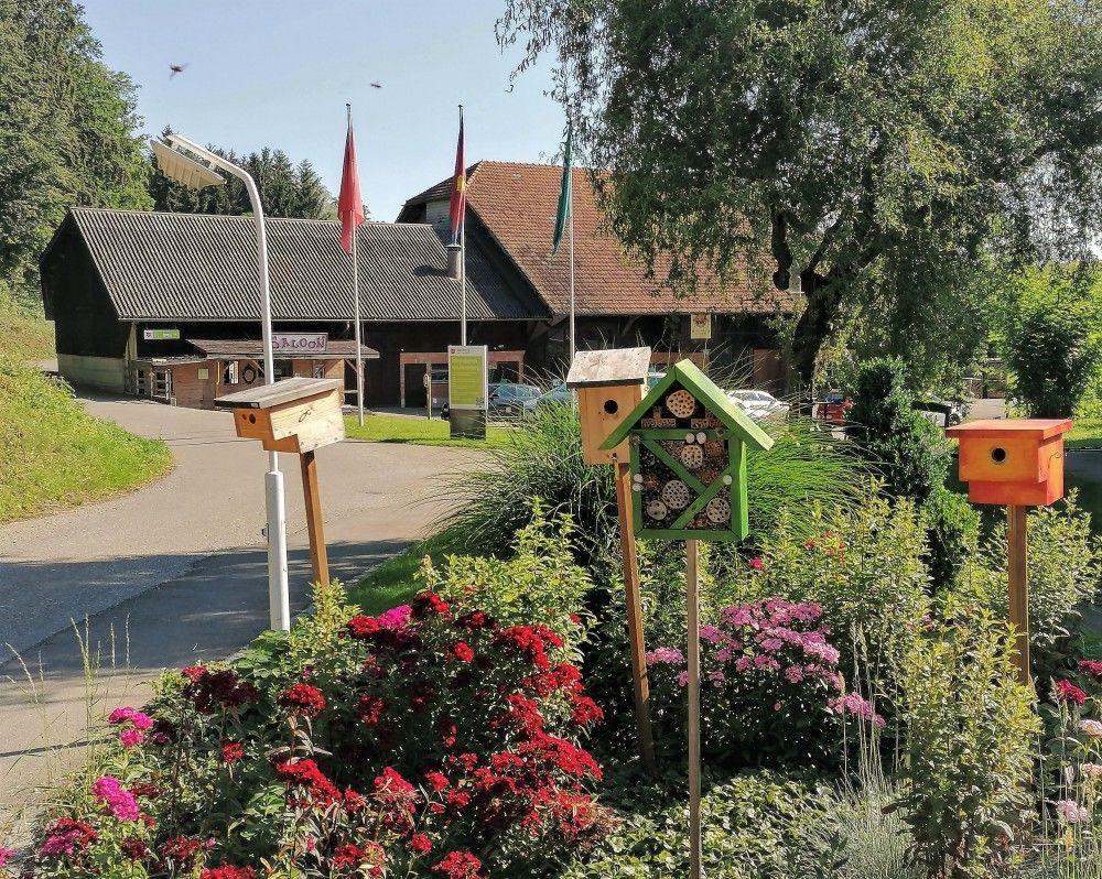 Hasenberg, Einfahrt