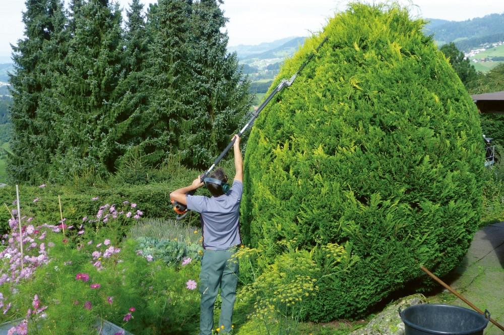 Mitarbeiterin Gartenbau- und Gartenpflege / Mitarbeiter Gartenbau- und Gartenpflege