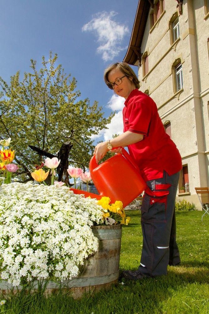Umgebungs- und Gartenarbeit