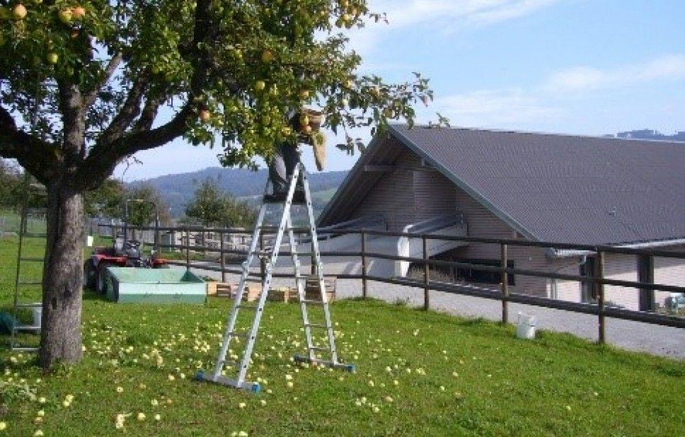 Mitarbeiter/-in   für Garten, Landwirtschaft und Tierhaltung sowie Hauswirtschaft für unser Ferienzentrum in Gontenschwil.