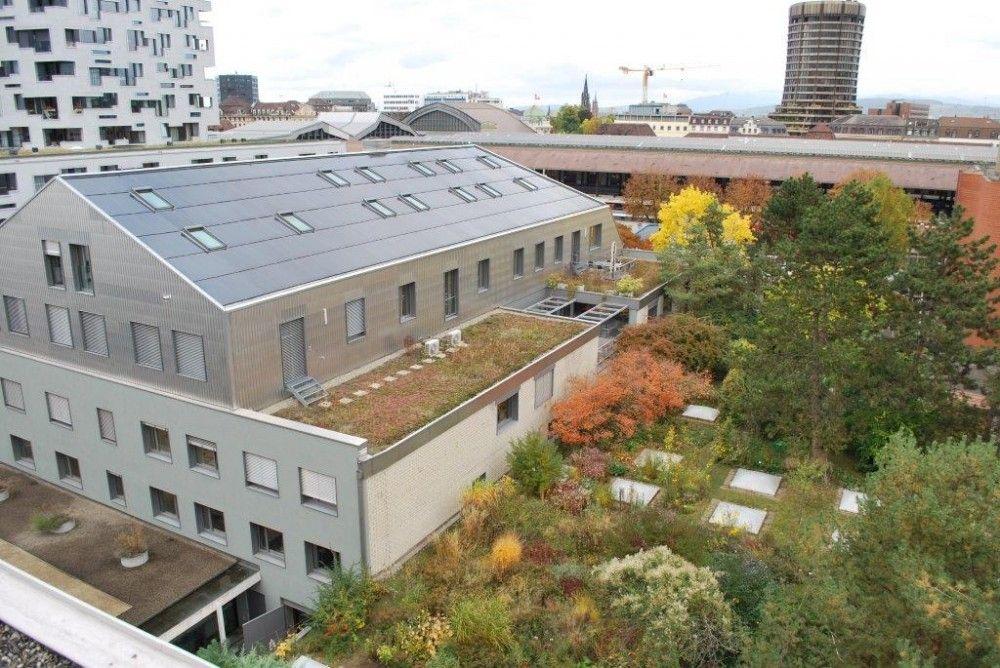 Die geschützte Arbeitsstätte in Basel