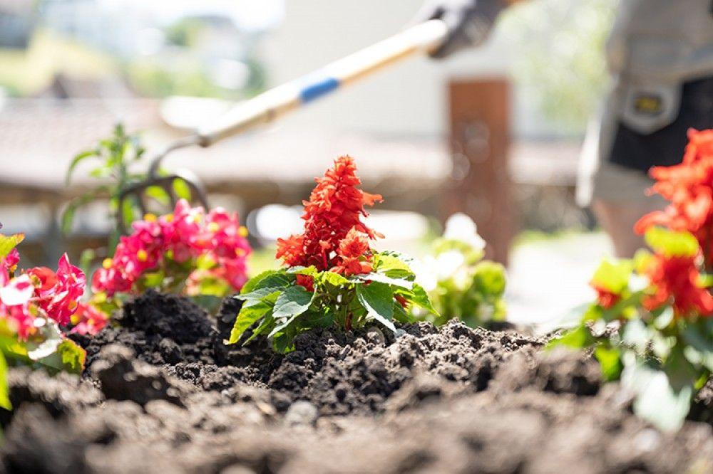 Gartenbau Appenzell