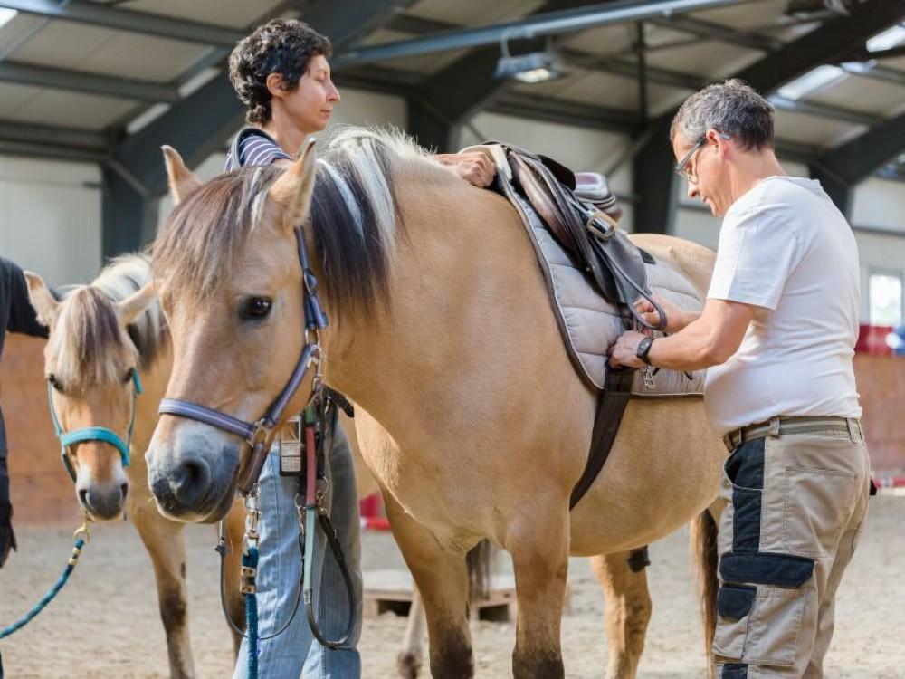1 Place à la Thérapie avec le cheval